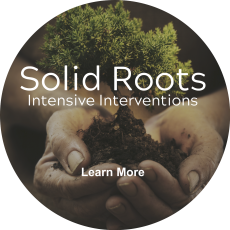 Solid Roots Intensive Interventions SEL